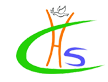 Hillview care services
