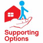Supporting Options